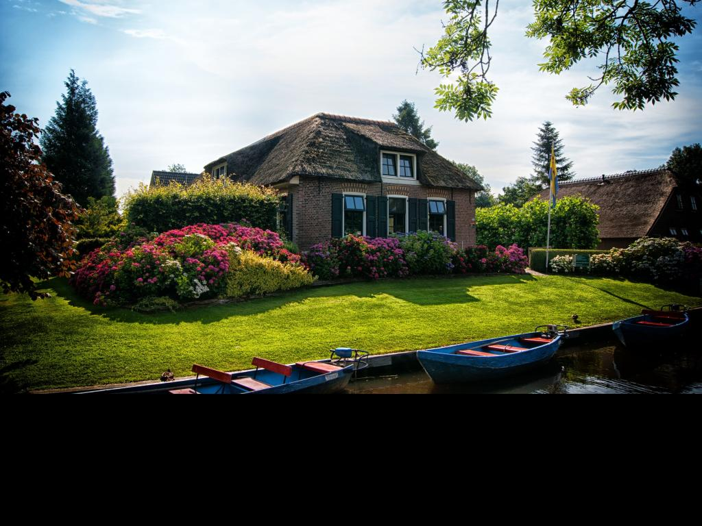 Backyard home improvements change the atmosphere of your home